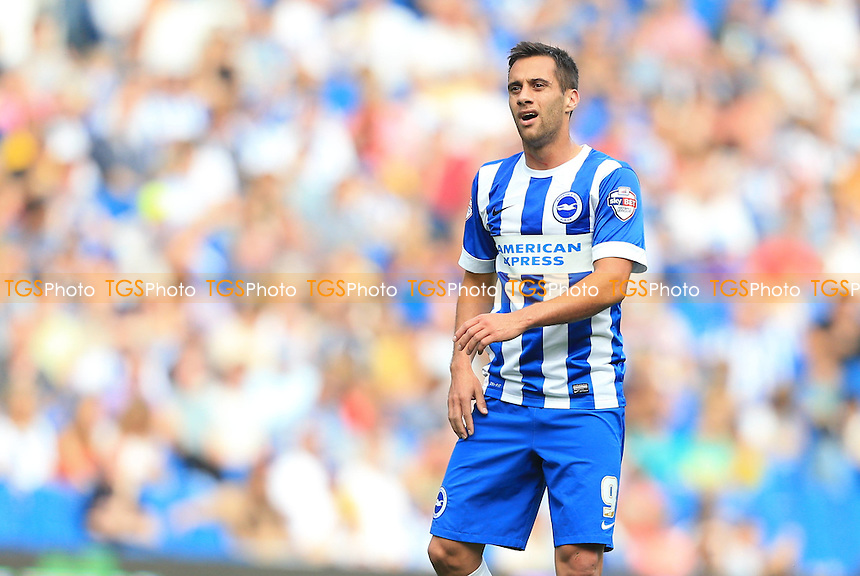 Sam Baldock of Brighton & Hove Albion - Brighton & Hove Albion vs Blackpool - Sky Bet Championship Football at the American Express Community Stadium, Falmer, Brighton - 20/09/14 - MANDATORY CREDIT: Simon Roe/TGSPHOTO - Self billing applies where appropriate - contact@tgsphoto.co.uk - NO UNPAID USE