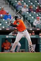 Norfolk Tides Ryan Mountcastle (20) bats during an International League game against the Buffalo Bisons on June 21, 2019 at Sahlen Field in Buffalo, New York.  Buffalo defeated Norfolk 2-1, the first game of a doubleheader.  (Mike Janes/Four Seam Images)