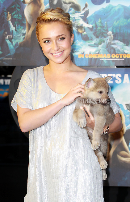WWW.ACEPIXS.COM . . . . .  ..... . . . . US SALES ONLY . . . . .....October 10 2010, London....Hayden Panettiere at the UK premiere of 'Alpha and Omega' in London ....Please byline: FAMOUS-ACE PICTURES... . . . .  ....Ace Pictures, Inc:  ..Tel: (212) 243-8787..e-mail: info@acepixs.com..web: http://www.acepixs.com