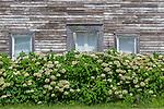 A farmhouse in Pawlet, Vermont, USA