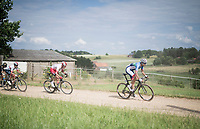 Niki Terpstra (NED/Total - Direct Energie) followed by later race winner Kenneth Vanbilsen (BEL/Cofidis)<br /> <br /> Dwars door het Hageland 2019 (1.1)<br /> 1 day race from Aarschot to Diest (BEL/204km)<br /> <br /> ©kramon