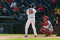 Oregon State Beavers first baseman Zak Taylor (16) at bat during a game against the New Mexico Lobos on February 15, 2019 at Surprise Stadium in Surprise, Arizona. Oregon State defeated New Mexico 6-5. (Zachary Lucy/Four Seam Images)