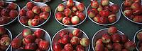 Europe/France/Rhône-Alpes/69/Rhône/Lyon: Fruits de l'Ardèche sur le marché du quai de Saône - Nectarine