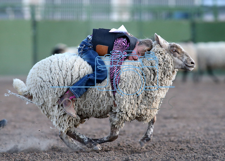 Gracie Starr, of Fallon, competes in the Mutton Bustin' portion of the Smackdown Tour Bull Riding event at Fuji Park in Carson City, Nev., on Saturday, June 7, 2014. Star scored a 79 to win.<br /> Photo by Cathleen Allison