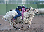 Gracie Starr, of Fallon, competes in the Mutton Bustin' portion of the Smackdown Tour Bull Riding event at Fuji Park in Carson City, Nev., on Saturday, June 7, 2014. Star scored a 79 to win.<br />
