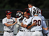 Frozen Ropes teammates celebrate after their 1-0 walkoff win over the Atlantic Coast Rays in the 18U Independence Day Tournament final at Baseball Heaven in Yaphank on Monday, July 4, 2016.