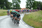 Bora-Hansgrohe drive the peloton along during Stage 1 of the Criterium du Dauphine 2019, running 142km from Aurillac to Jussac, France. 9th June 2019<br /> Picture: ASO/Alex Broadway | Cyclefile<br /> All photos usage must carry mandatory copyright credit (© Cyclefile | ASO/Alex Broadway)