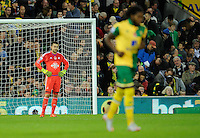 Swansea City Goalkeeper Lukasz Fabianski looks dejected after the goal scored by Jonny Howson of Norwich City, 1-0, during the Barclays Premier League match between Norwich City and Swansea City played at Carrow Road, Norwich on November 7th 2015
