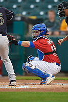 Buffalo Bisons catcher Michael De La Cruz (55) during an International League game against the Scranton/Wilkes-Barre RailRiders on June 5, 2019 at Sahlen Field in Buffalo, New York.  Scranton defeated Buffalo 4-0, the second game of a doubleheader. (Mike Janes/Four Seam Images)