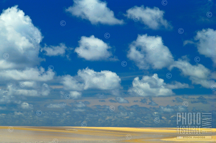 Puffy clouds above beach