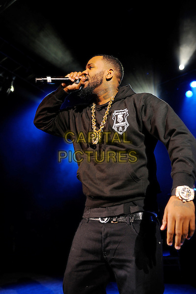 LONDON, ENGLAND - February 22: The Game(Jayceon Terrell Taylor) performs in concert at the o2 Shepherd's Bush Empire on February 22, 2014 in London, England<br /> CAP/MAR<br /> &copy; Martin Harris/Capital Pictures
