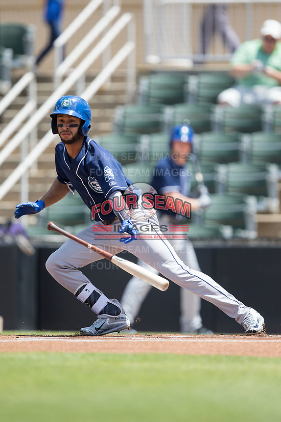 Carlos Herrera (2) of the Asheville Tourists lays down a bunt against the Kannapolis Intimidators at Kannapolis Intimidators Stadium on May 7, 2017 in Kannapolis, North Carolina.  The Tourists defeated the Intimidators 4-1.  (Brian Westerholt/Four Seam Images)