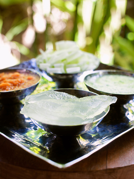 Raw ingredients from the spa at Six Senses Hideaway Yao Noi. Thailand. Including aloe vera, pureed carrot,cucumber slices and pureed cucumber.