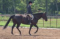 13 & Under English Equitation