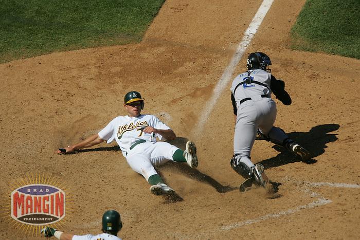Bobby Crosby. Kansas City Royals vs Oakland Athletics. Oakland, CA 8/21/2005 MANDATORY CREDIT: Brad Mangin