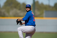 Chicago Cubs relief pitcher Mark Malave (33) during a Minor League Spring Training game against the Los Angeles Angels at Sloan Park on March 20, 2018 in Mesa, Arizona. (Zachary Lucy/Four Seam Images)