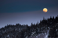 winter landscape shows moonrise above fog at Turnagain Pass area January 2014