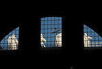 picture taken from the inside of the Saint Peter Church in rome italy