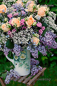 Carl, FLOWERS, photos, SWLA12006,#f# Blumen, Natur, flores, naturaleza