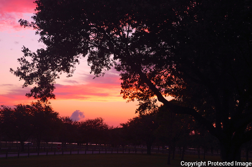 Okeeheelee Park, West Palm Beach, Florida, presents many opportunities for photographing magnificent sunsets.