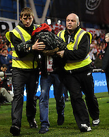 29th March 2015; UEFA EURO 2016 Championship Qualifier Group D, Ireland vs Poland, Aviva Stadium, Dublin<br /> A Poland supporter is removed from the stadium by security staff.<br /> Picture credit: Tommy Grealy/actionshots.ie.