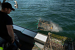 Off the coast of Vinalhaven, Maine lobsterman Cody Lyon throws his trap into the sea.
