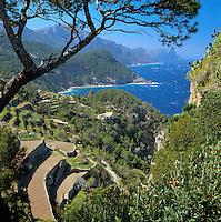 Spain, Balearic Islands, Mallorca: terraces along North coast | Spanien, Balearen, Mallorca: Terrassen an der Nordkueste