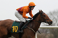Zakaroo ridden by D P Fahy in action in the European Breeders Fund National Hunt Novices Hurdle