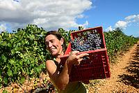 SPAIN Mallorca, Binissalem, Finca Biniagual, wine grape harvest / SPANIEN Mallorca, , Binissalem, Finca Biniagual, Weinernte, Cristina Basanez