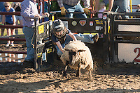 SEBRA - Virginia Beach, VA - 4.26.2014 - Mutton Bustin'