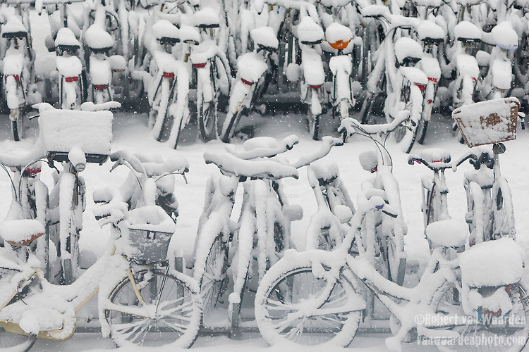 Snow covered bikes in Amsterdam, the Netherlands.