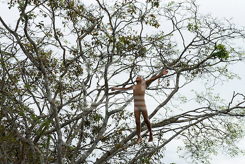 Xingu Indigenous Park, Mato Grosso State, Brazil. Aldeia Boa Esperanca (Trumai). Boy jumping from a tree into the river, laughing.