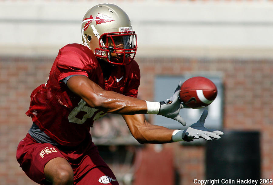 TALLAHASSEE, FL 8/8/10-FSU-080810 CH-Florida State's  Rodney Smith makes a catch during practice Sunday in Tallahassee. .COLIN HACKLEY PHOTO