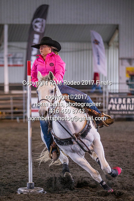 The RAM Rodeo Tour Finals at the RCRA in Newmarket, Ontario, Canada<br />  13, 14 &amp; 15 Oct 2017<br /> <br /> normbetts@canadianphotographer.com<br /> &copy;2017, Norm Betts, photographer<br /> 416 460 8743