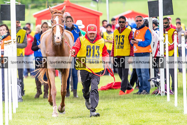 Day 3. Royal Windsor Horse Show. Windsor. Berkshire. UK.  Endurance. Vipper De Luriecq the horse of Al Khalifa . Hh Sh AL Nasser Bin Hamad being trotted up at vet check at end of race. BHR.11/05/2018. ~ MANDATORY Credit Elli Birch/Sportinpictures - NO UNAUTHORISED USE - 07837 394578