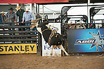 423 Page 423 of D&H Cattle Co/ Glover during the American Bucking Bull, Incorporated event in Decatur, TX - 6.3.2016. Photo by Christopher Thompson