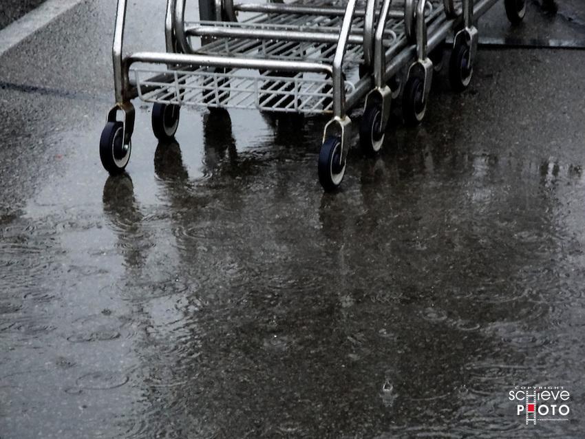 Shopping carts in the rain.