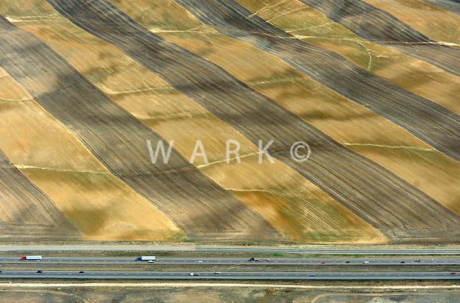 Waving field, east of Longmont, Colorado along I-25.  March 2011