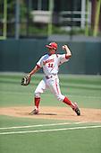 baseball-32-Schneider 2010