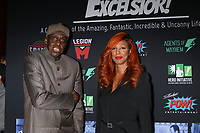 LOS ANGELES - JAN 30:  Bill Duke, Guest at the Excelsior! A Celebration of Stan Lee at the TCL Chinese Theater IMAX on January 30, 2019 in Los Angeles, CA