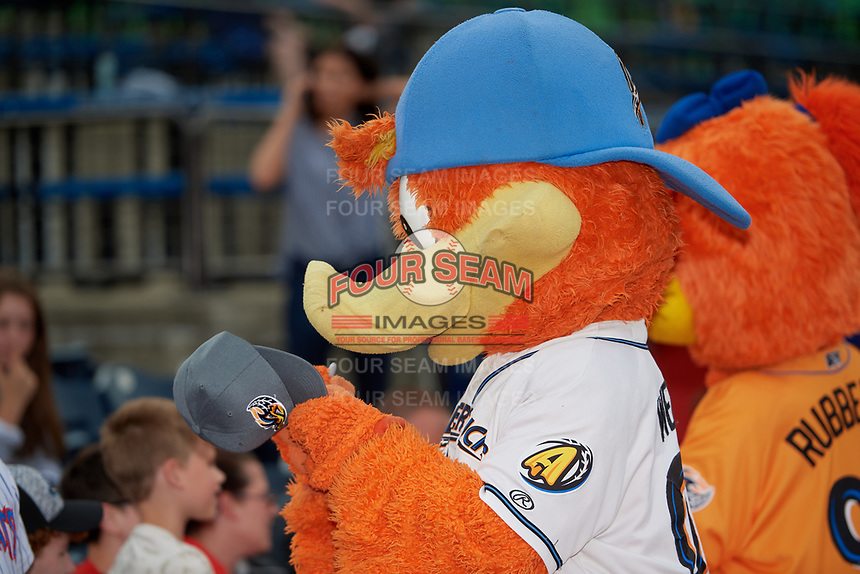 Akron RubberDucks mascot Webster the Duck signs autographs before an Eastern League game against the Reading Fightin Phils on June 4, 2019 at Canal Park in Akron, Ohio.  Akron defeated Reading 8-5.  (Mike Janes/Four Seam Images)