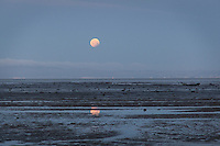 The April full moon setting, reflected in San Francisco Bay.  There is still a small portion of moon hidden by the night's lunar eclipse.