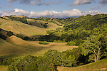 Rolling hills in Spring, Briones Regional Park, Contra Costa County, California