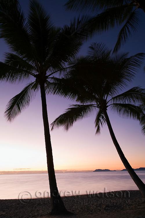 Dawn at Palm Cove, Cairns, Queensland, Australia