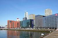 Nederland Rotterdam 2019. De Rijnhaven. Hoogbouw aan de Posthumalaan. Foto Berlinda van Dam / Hollandse Hoogte