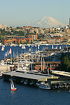 Seattle, Lake Union, South Lake Union, Mount Rainier, sailboats racing, Duck Dodge race, Washington State, Pacific Northwest, United States,