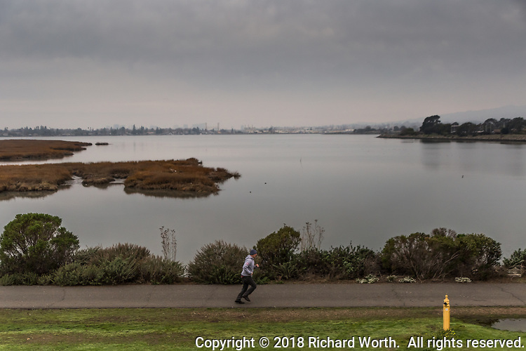 A lone runner on the trail at MLK Regional Shoreline with San Leandro Bay and the Oakland city skyline as background under an overcast sky.