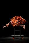 TRRR<br /> <br /> Conception, direction, chorégraphie, performance Thiago Granato<br /> Chorégraphes « invités » (présences fictionnelles) Stone, Jaguar<br /> Assistant à la direction, co-créateur Sandro Amaral<br /> Entraînement physique Daniela Visco<br /> Conseiller artistique Jefta Van Dinther<br /> Conseillère dramaturgique Laura Samy<br /> Créateur son David Kiers<br /> Créatrice lumières Susana Alonso<br /> Voix off Chrysa Parkinson<br /> Cadre : Festival Uzès Danse<br /> Date : 15 juin 2019<br /> Lieu : Salle de l'ancien évêché<br /> Ville : Uzès