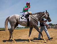 ELMONT, NY - JUNE 10: Irad Ortiz Jr., aboard Disco Partner #2, waves at the camera as he is led to the winner's circle after winning the Jaipur Invitational Stakes on Belmont Stakes Day at Belmont Park on June 10, 2017 in Elmont, New York (Photo by Jesse Caris/Eclipse Sportswire/Getty Images)