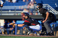 Batavia Muckdogs catcher Jarett Rindfleisch (44) and umpire Raul Moreno await the pitch during a game against the Hudson Valley Renegades on August 2, 2016 at Dwyer Stadium in Batavia, New York.  Batavia defeated Hudson Valley 2-1. (Mike Janes/Four Seam Images)